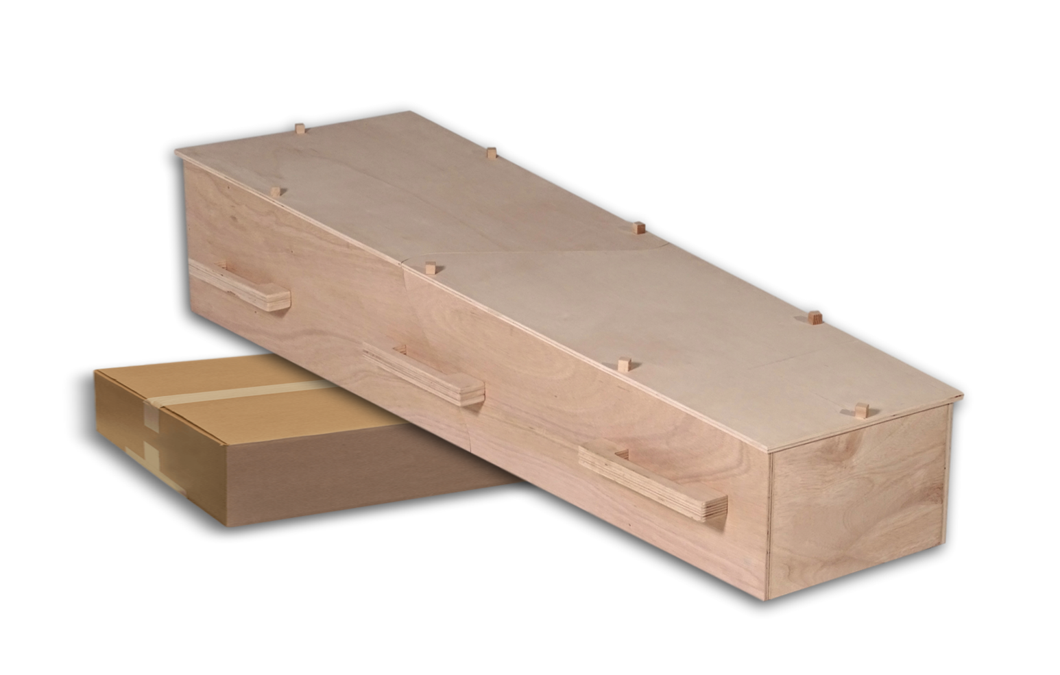 chistann diy flat pack eco coffin
