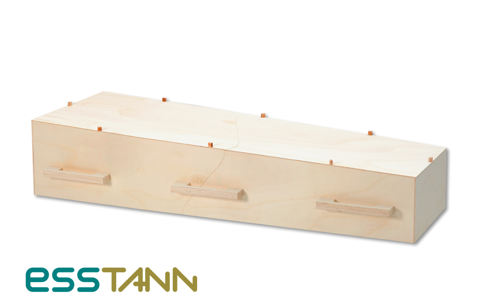 ESSTANN dutch design eco coffin